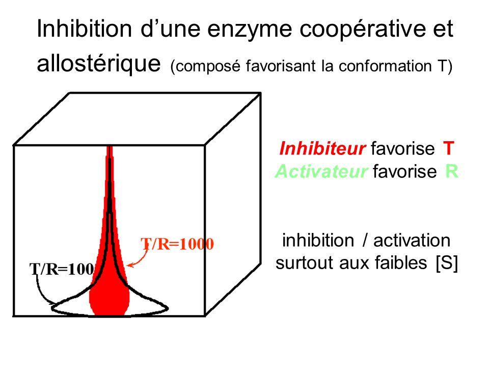 inhibition / activation surtout aux faibles [S]